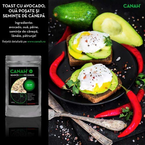 Toast cu Ouă poșate, Castraveți, Avocado și Semințe de Cânepă
